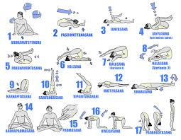 Hatha Yoga Poses Beginners AIH3o2Tt
