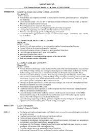 Download Sales Accounts Manager Resume Sample As Image File