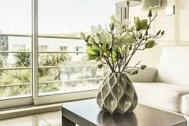 feng shui pflanzen bringen positive energie in dein zuhause