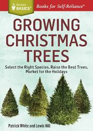 Types Of Christmas Trees To Plant by 12 Best Spirit Of Christmas Images On Pinterest La La La Diy