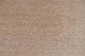Seamless Neutral Brown Carpet Texture Background Stock Photo