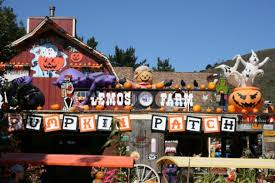 Mission Valley Pumpkin Patch by Best Pumpkin Patches And Farms In The San Francisco Bay Area