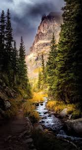 Christmas Tree Cataract Images by 683 Best Colorado Is My Home Images On Pinterest Rocky