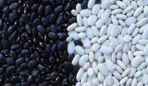 Whats In A Bean Lots Of Health Benefits