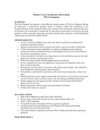 Resume Sample For Service Coordinator New Patient Care Summary And Responsibilities