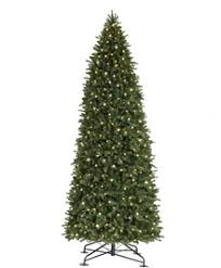 Royal Versailles Giant Tree17 Ft84 InClear Lights 31009323