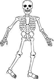 Free Printable Skeleton Coloring Page For Kids
