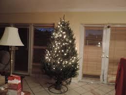 Stew Leonards Christmas Trees 2015 by December 2013 U2013 Las Puertas Abiertas De Par En Par