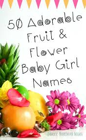 Quirky Bohemian Mama A Bohemian Mom Blog 50 Adorable Fruit and