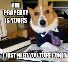 Dog Real Estate Meme