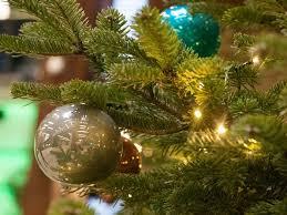 Southern Living Christmas Tree Branch