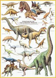Melissa And Doug Dinosaur Floor Puzzles by Eurographics Dinosaurs Jurassic 1000 Piece Puzzle Over 20 Of The