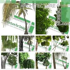 Highresolution Cutout Trees Collection 4 PNG Format