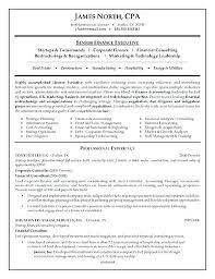 Hr Consultant Resume Samples It Example Of Curriculum Management Consulting Examples Resumes Intende