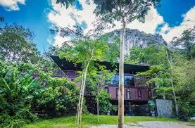 100 Containerhouse Containerhousesurroundedbytropicalrainforest04