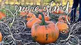 Visalia Mooney Pumpkin Patch by Pumpkin Patch Corn Maze On Sauvie Island In Portland Youtube