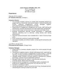 Resume Bullet Points Examples Top