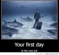 Your First Day At The New Job