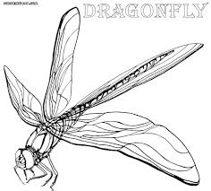 Advice Dragonfly Colouring Pages Coloring To Download And Print Throughout Simple