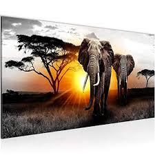 bilder afrika elefant wandbild vlies leinwand bild