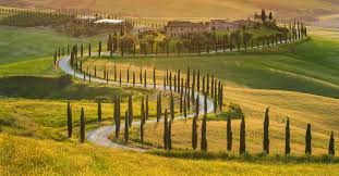 Italy Tuscan Olive Trees Green Field Beautiful Nature Landscape Sunlight House Decorating Ideas Designs