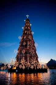 Christmas Tree Shop Freehold Nj by 67 Best Holiday Lights Images On Pinterest Holiday Lights