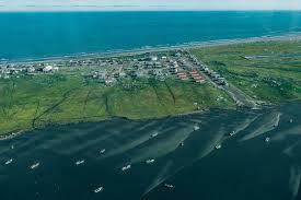 Sinking Islands Global Warming by Alaska Diaries To Stay In Shishmaref Bird In Flight