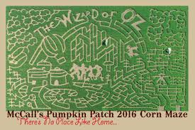 Marana Pumpkin Patch 2015 by 100 Marana Pumpkin Patch Jobs Who U0027s Most At Risk For