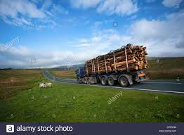 Scania Log Transport Lorry Trucking Timber To Ribblehead Rail Link ... Trucking Road Freight Rail And Drayage Services Transportation Railroad Industries Wrestle With Each Other As Technology Rail Trucking Shipping In One Shot Stock Photo 85246782 Alamy Railway Truck Photos Images Isometric Logistics Icons Set Of Different Transportation Truck Trailer Transport Express Logistic Diesel Mack Train And Concept Image Nmc Centers Nebraska Powattamie County Ia Peterbilt 357 Brandt Inland Ports Boosting Cargo To Charleston Costs Train Freight Station Stage Transport