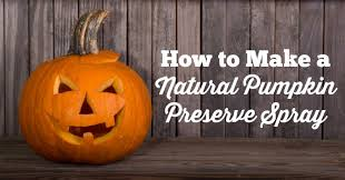 Keep My Pumpkin From Rotting by Natural Pumpkin Preserve Spray Don U0027t Mess With Mama