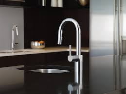Moen Kiran Pull Down Faucet by Align Chrome One Handle High Arc Pulldown Kitchen Faucet 7565