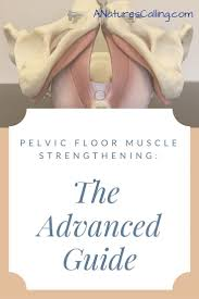 Hypertonic Pelvic Floor Muscles by 14 Best Pelvic Floor Muscles Images On Pinterest Muscles Pelvic