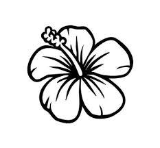 Easy To Draw Hawaiian Flowers