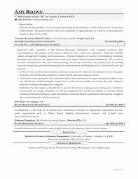 47 Inspirational Analyst Cover Letter Awesome Resume Example Rh Dragandabic Com Staff
