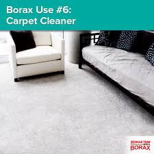Fleas Hardwood Floors Borax by Borax Use 6 Carpet Get Rid Of Carpet Stains By Using 1