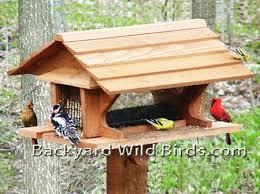 Cedar Pavilion Platform Bird Feeder