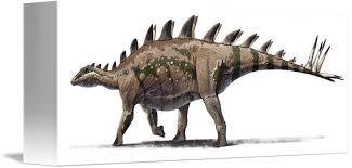Tuojiangosaurus Multispinus Dinosaur From Shishugo By StockTrek Images