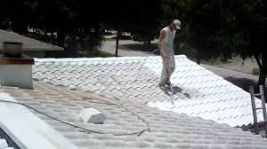 roof cleaned sealed painted with tile guard roof coating