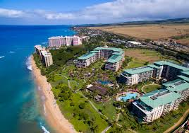 Pumpkin Patch Kula Hawaii by Fall Is The Best Time To Visit And Buy A Vacation Rental Condo In Maui