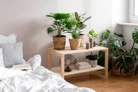 diy deko idee jungle feeling im schlafzimmer