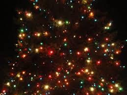 Batavia Christmas Tree Pickup Schedule 2013