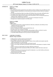 Medical Scribe Resume Samples | Velvet Jobs Good Skills And Attributes For Resume Platformeco Examples Good Resume Profile Template Builder Experience Skills 100 To Put On A Genius 99 Key Best List Of All Types Jobs Additional Add Sazakmouldingsco Of Salumguilherme Job New Computer For Floatingcityorg 30 Sample Need A Time Management 20 Fresh And Abilities Strengths Film Crew Example Livecareer