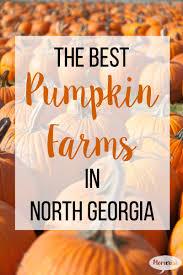 Gainesville Ga Pumpkin Patch by 7 Of The Best Pumpkin Farms In North Georgia From Mom U0027s Desk