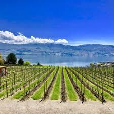jeux de 馗ole de cuisine de quails gate estate winery 149 photos 72 avis vignobles 3303