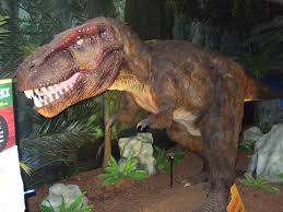 Brookfield Zoo Halloween 2014 by Brigid Entries Tagged With Dinomasaurs