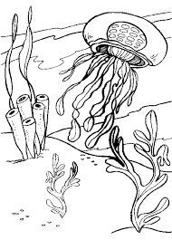 Underwater Life Jellyfish Colouring Page For Kids