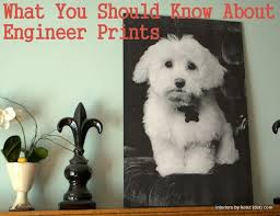 Staples Color Printing Cost Per Pag Popular Page