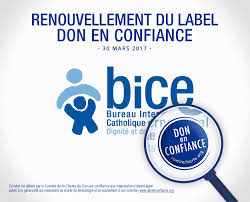 bice ngo protecting the rights of the child worldwide