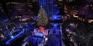 Rockefeller Christmas Tree Lighting 2015 Performers by Massive Backyard Tree Will Be Rockefeller Center Christmas Tree