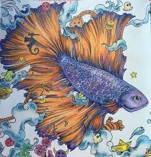 My Betta Fish Animorphia